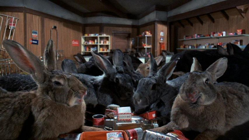 Night of the Lepus #2